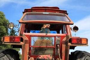 traktor.bak